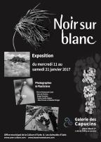 affiche-nsb-2017